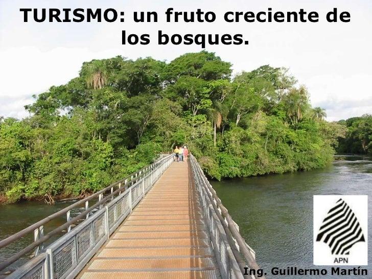 TURISMO: un fruto creciente de       los bosques.                                   1                    Ing. Guillermo Ma...