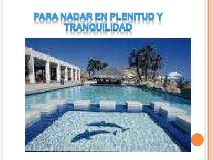 Turismo, viajes, atencion de alta calidad Slide 2