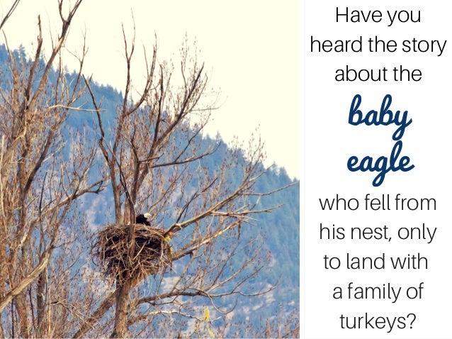 Turkeys get you down