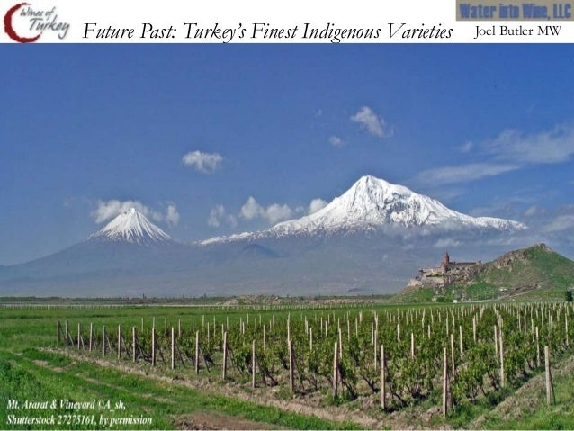 Future Past: Turkey's Finest Indigenous Varieties   Joel Butler MW