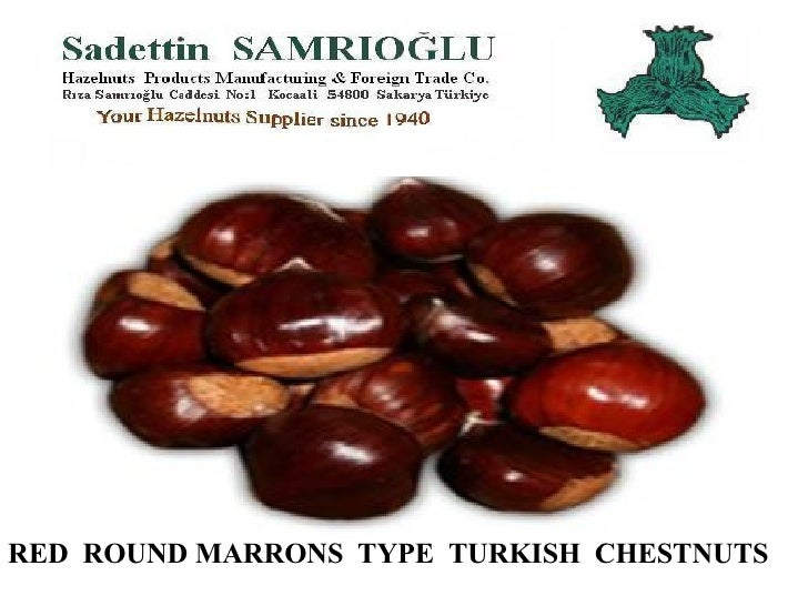 RED  ROUND MARRONS  TYPE  TURKISH  CHESTNUTS WORLD'S MOST DELICIOUS CHESTNUTS FROM  AEGEAN