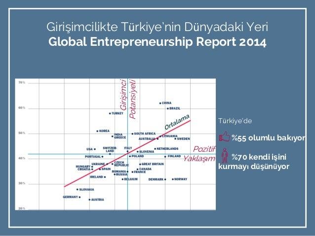 entrepreneur report