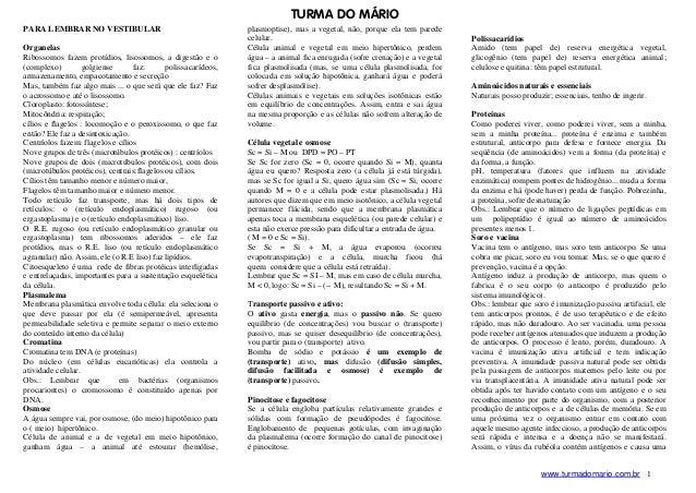 TURMA DO M˘RIOPARA LEMBRAR NO VESTIBULAR                                     plasmoptise), mas a vegetal, não, porque ela ...