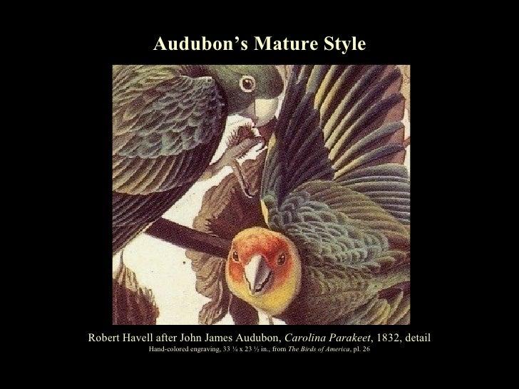 Turning Heads: Audubon's Mature Style Alan C. Braddock Robert Havell after John James Audubon,  Carolina Parakeet , 1832, ...