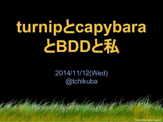 turnipとcapybara とBDDと私 2014/11/12(Wed) @tchikuba
