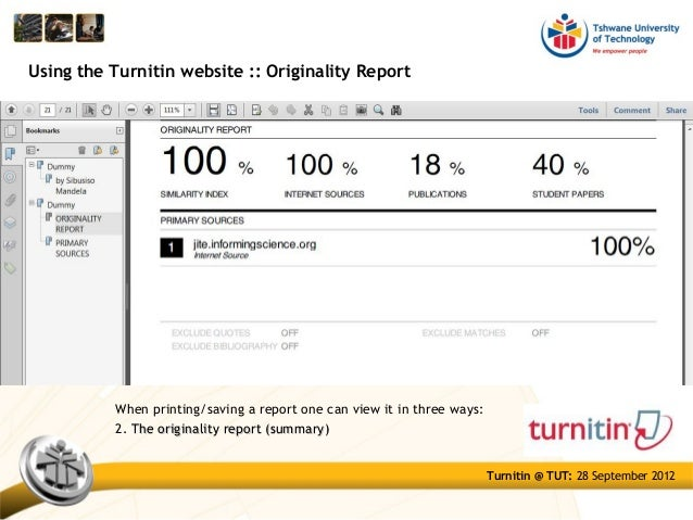 Turnitin summary report