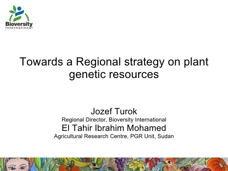 Towards a Regional strategy on plant genetic resources Jozef Turok Regional Director, Bioversity International El Tahir Ib...