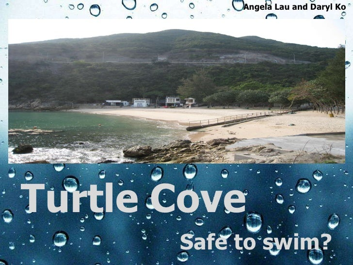 Turtle Cove Safe to swim? Angela Lau and Daryl Ko