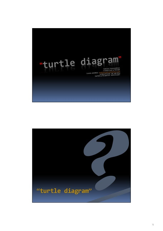 "1""turtle diagram"""