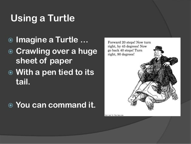 The basics  Tells Python to use the Turtle module  Sets up a Turtle and makes it a Turtle Shape  Moves forward 100 pixels ...