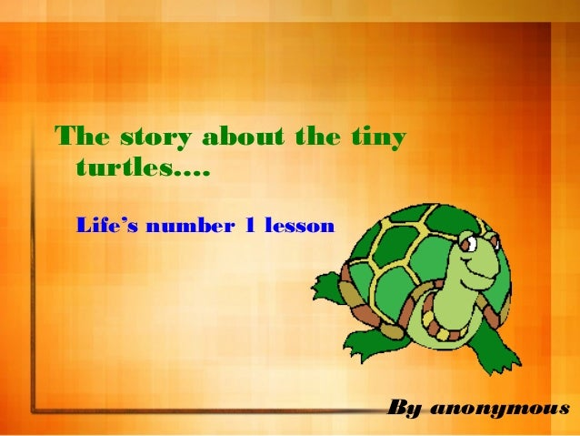 By anonymous The story about the tiny turtles….  Life's number 1 lesson