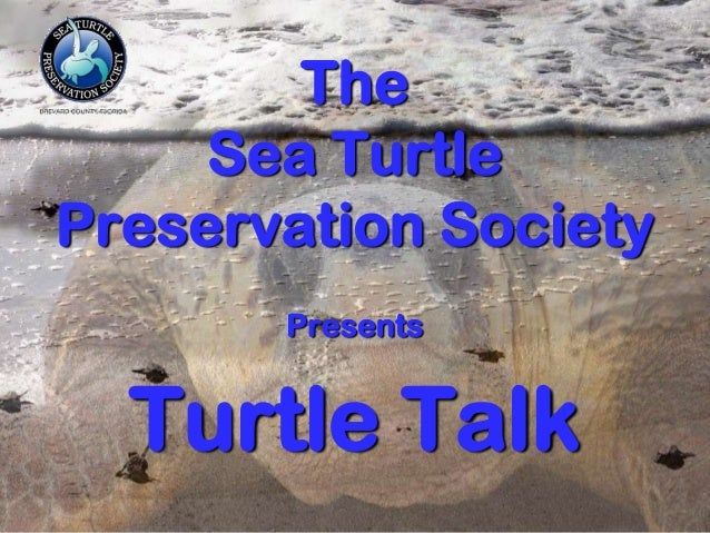 The Sea Turtle Preservation Society Presents Turtle Talk