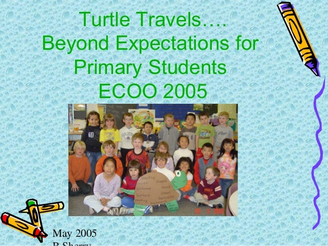 May 2005 Turtle Travels…. Beyond Expectations for Primary Students ECOO 2005