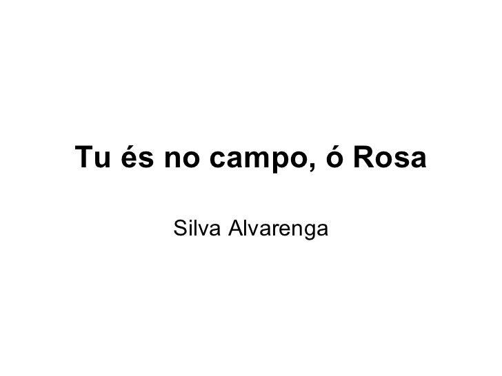 Tu és no campo, ó Rosa Silva Alvarenga