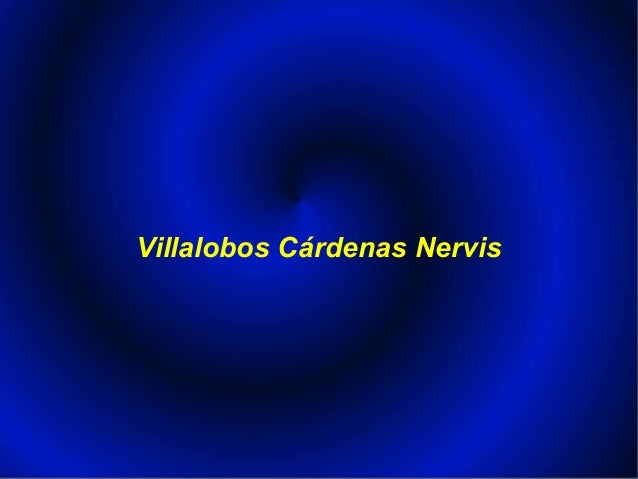 Villalobos Cárdenas Nervis