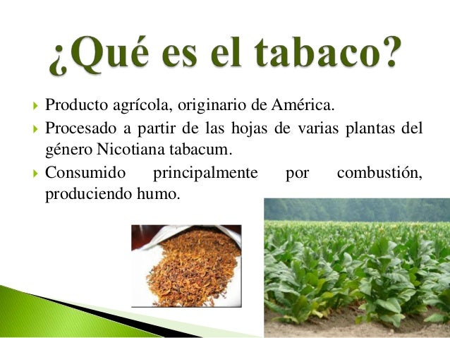    Producto agrícola, originario de América.   Procesado a partir de las hojas de varias plantas del    género Nicotiana...