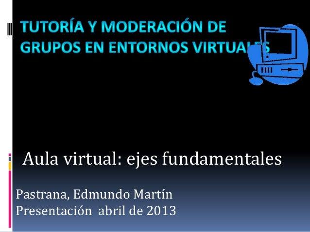 Aula virtual: ejes fundamentalesPastrana, Edmundo MartínPresentación abril de 2013