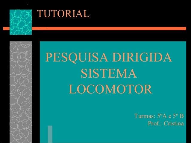 TUTORIAL  PESQUISA DIRIGIDA SISTEMA LOCOMOTOR Turmas: 5ºA e 5º B Prof.: Cristina