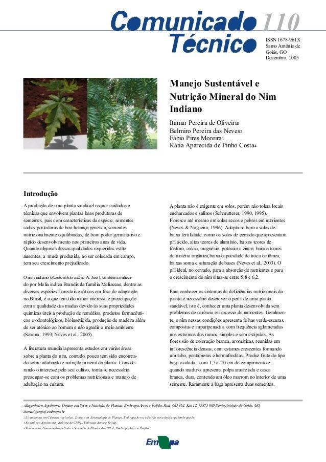 110 ISSN 1678-961X Santo Antônio de Goiás, GO Dezembro, 2005  Manejo Sustentável e Nutrição Mineral do Nim Indiano Itamar ...