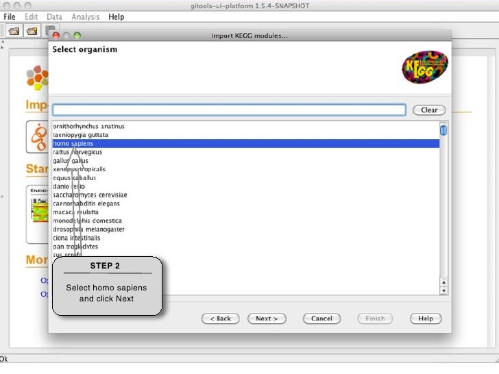 STEP 3    Give a name to the file that will be  downloaded and  indicate a Folder  where to place it.     Click Next.