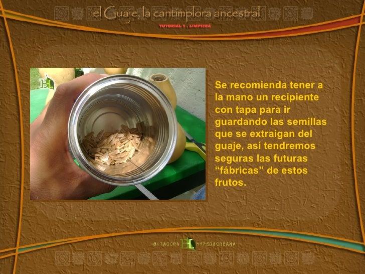 Se recomienda tener a la mano un recipiente con tapa para ir guardando las semillas que se extraigan del guaje, así tendre...