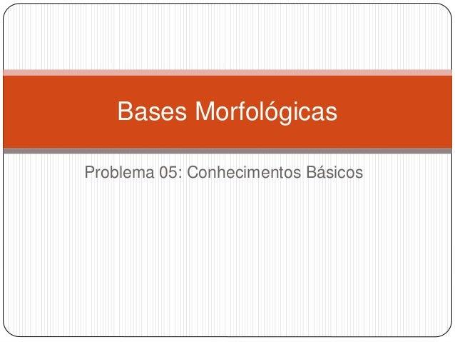 Problema 05: Conhecimentos Básicos Bases Morfológicas