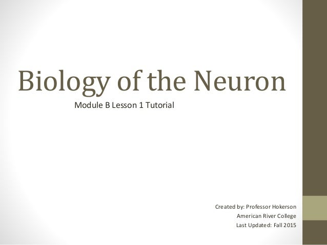 Biology of the Neuron Module B Lesson 1 Tutorial Created by: Professor Hokerson American River College Last Updated: Fall ...