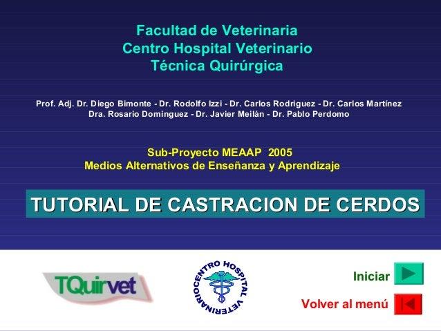 Sub-Proyecto MEAAP 2005 Medios Alternativos de Enseñanza y Aprendizaje TUTORIAL DE CASTRACION DE CERDOSTUTORIAL DE CASTRAC...