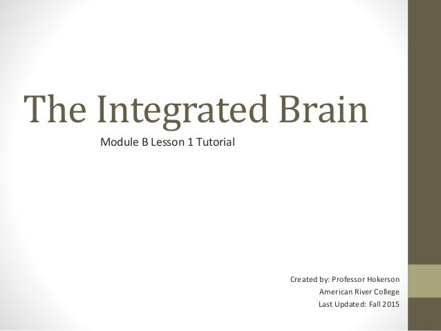The Integrated Brain Module B Lesson 1 Tutorial Created by: Professor Hokerson American River College Last Updated: Fall 2...