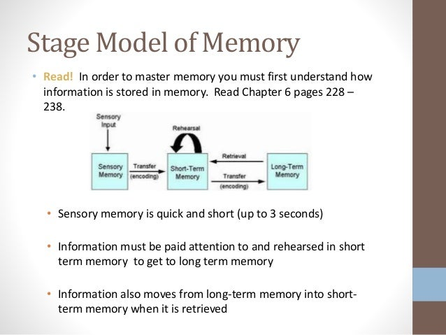 Memory distortion: an adaptive perspective
