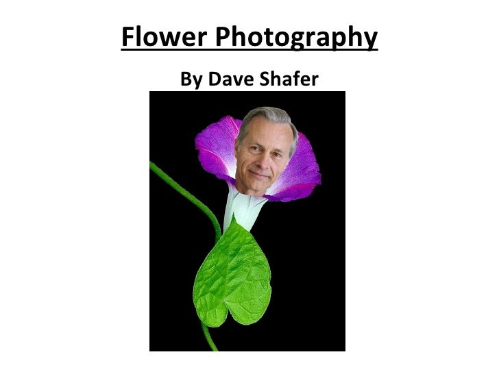 Flower Photography By Dave Shafer