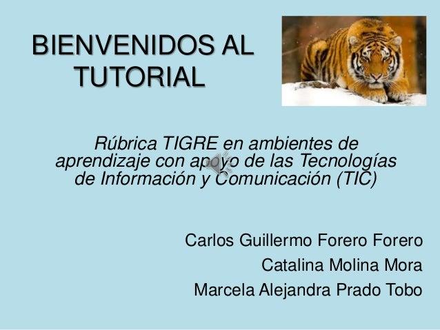 BIENVENIDOS AL   TUTORIAL     Rúbrica TIGRE en ambientes de aprendizaje con apoyo de las Tecnologías   de Información y Co...