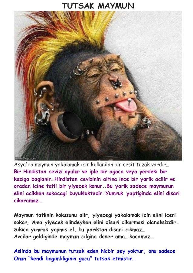 Tutsak Maymun