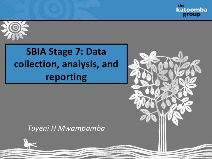 SBIA Stage 7: Data collection, analysis, and reporting<br />Tuyeni H Mwampamba<br />