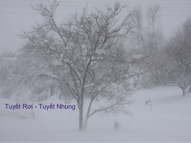 Tuyết Rơi - Tuyết Nhung