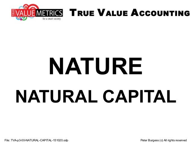 File: TVA-p3-00-NATURAL-CAPITAL-151020.odp Peter Burgess (c) All rights reserved NATURE NATURAL CAPITAL TRUE VALUE ACCOUNT...