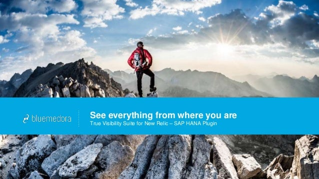 See everything from where you are True Visibility Suite for New Relic – SAP HANA Plugin