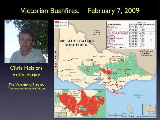 Victorian Bushfires.  Chris Heislers Veterinarian The Veterinary Surgery Yarrambat & North Warrandyte.  February 7, 2009