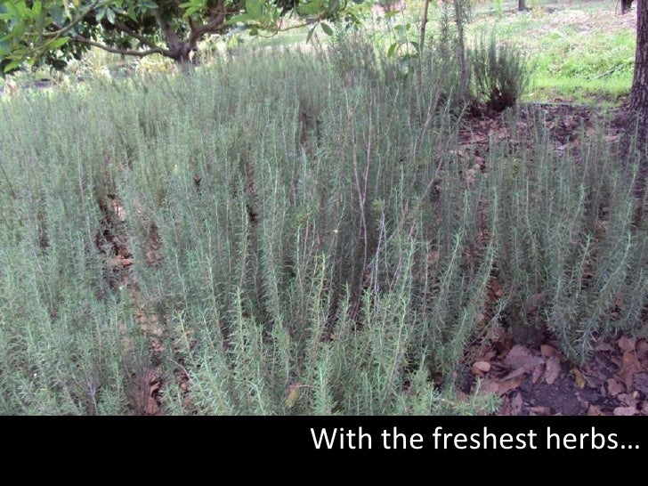 With the freshest herbs…<br />