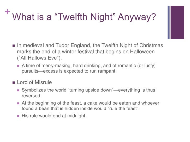 Essay on twelfth night