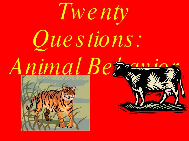 animal behaviors Animal behavior news scientific research on altruism in animals bullying, anti-predator behavior, weird eating and mating habits and more your source for the latest research news.