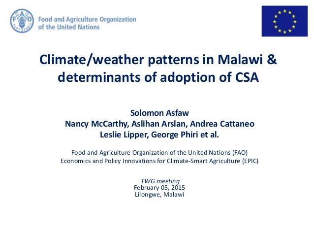 Solomon Asfaw Nancy McCarthy, Aslihan Arslan, Andrea Cattaneo Leslie Lipper, George Phiri et al. Food and Agriculture Orga...