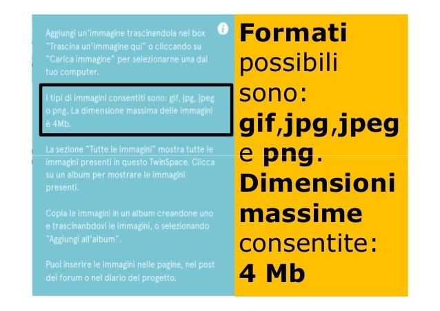 Formati possibili sono: gif,jpg,jpeg e png.e png. Dimensioni massime consentite: 4 Mb
