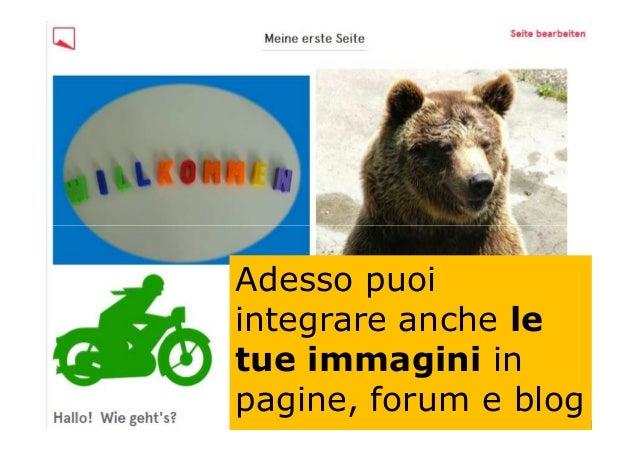 Adesso puoi integrare anche le tue immagini in pagine, forum e blog