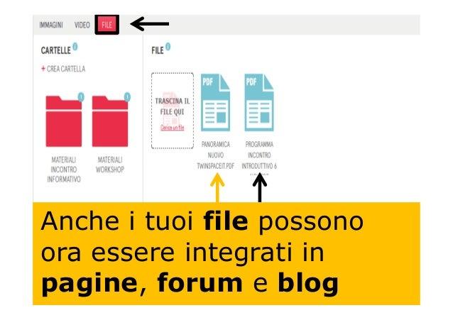 Anche i tuoi file possono ora essere integrati in pagine, forum e blog