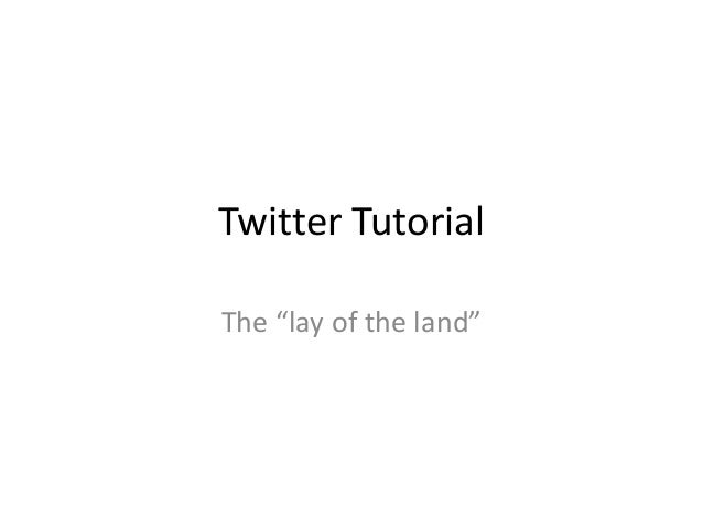 """Twitter TutorialThe """"lay of the land"""""""