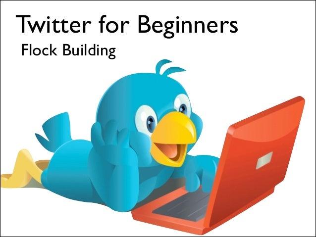 Twitter for Beginners Flock Building