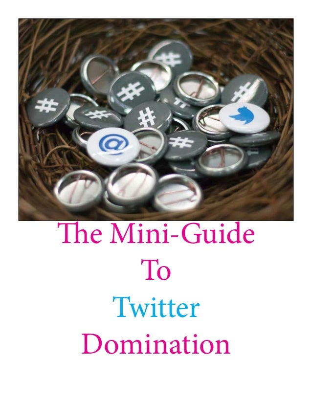The Mini-Guide To Twitter Domination