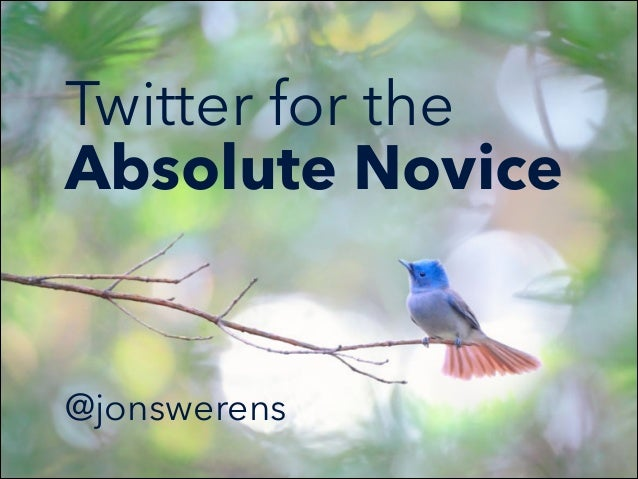 Twitter for the Absolute Novice   @jonswerens