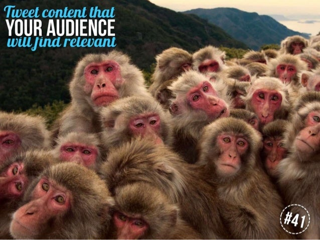 Tweet content that your audience will find relevant